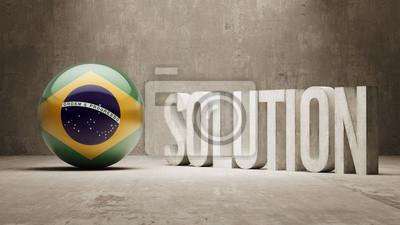Brazílie. Solution Concept.