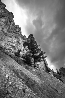 Fototapeta Bryce Canyon Černobílé fotografie