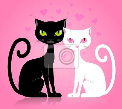 Černá bomba kočička