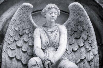 Fototapeta černá a bílá záběr anděla.