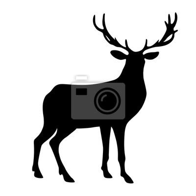 Černá izolované silueta jelenů na bílém pozadí. fototapeta ... 4e3c950d16