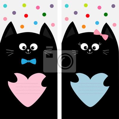 Stříkající černá kočička