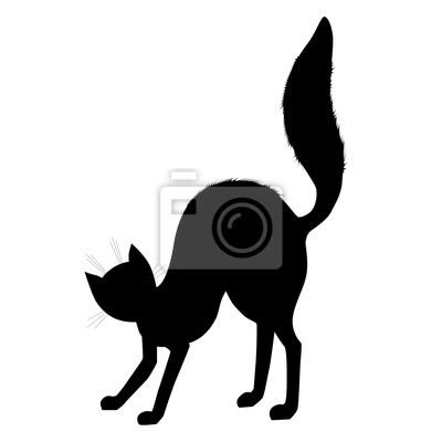 58241ad010a Fototapeta Černá kočka silueta. Halloween designovým prvkem. vektorové  ilustrace