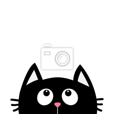 Baby černá kočička
