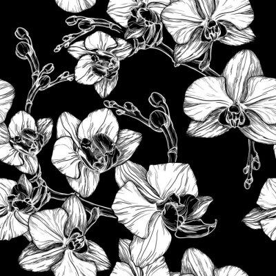 Fototapeta černé a bílé bezešvé vzor s ruční kreslení orchidej květina