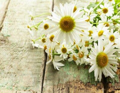 Fototapeta Čerstvé květy heřmánku kytice na dřevěném podkladu