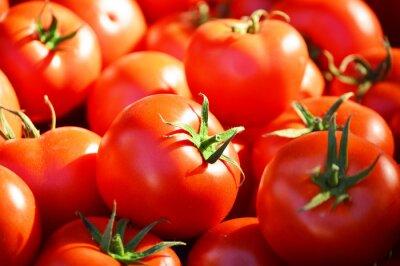 Fototapeta Čerstvé organické rajčata na pouličním stánku