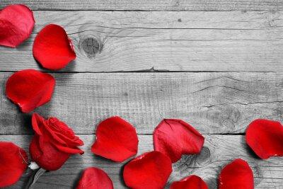 Fototapeta Červená růže a lístky na černé a bílé dřevěné pozadí