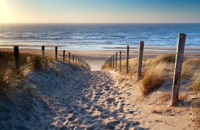 Fototapeta Cesta na severní pláži u moře ve zlatě slunci