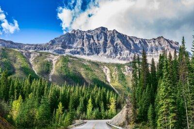Fototapeta Cesta v národním parku Yoho v Kanadě