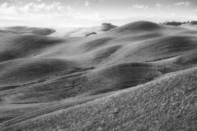 Fototapeta Colli toscani