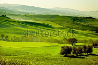 Fototapeta Countryside, San Quirico d`Orcia , Tuscany, Italy