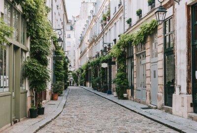 Fototapeta Cozy street in Paris, France