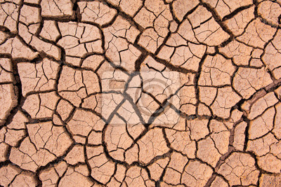 Fototapeta Cracked earth, cracked soil. texture of grungy dry cracking parched earth. Global worming effect.