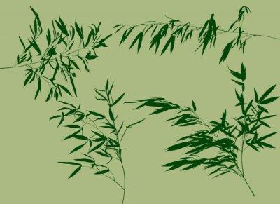 Fototapeta čtyři zelené bambusové větve nastavit ilustrační