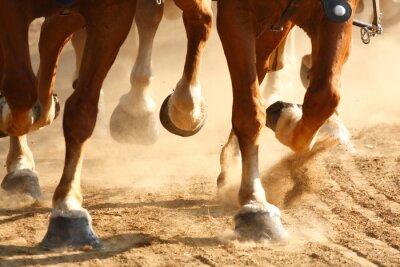 Fototapeta Cválajícím koni kopyta