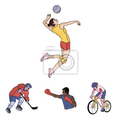 Cyklistika Box Ledni Hokej Volejbal Olympijske Sportovni Sada