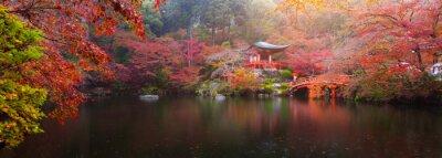 Fototapeta Daigo-dži na podzim
