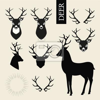 Fototapeta Deer hlavy 6d71f678eb