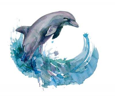 Fototapeta delfín