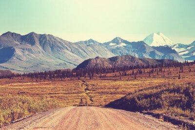 Fototapeta Denali Highway