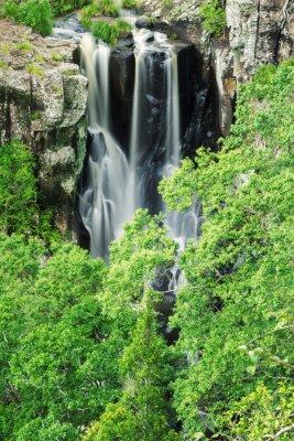Fototapeta Denham Falls v Beechmont, Queensland, Austrálie. Nachází se v Denham Reserve.