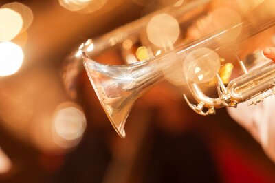 Fototapeta Detail trubního detailním v zlatými tóny
