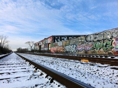 Fototapeta Detroit, Michigan koleje a sníh - fotografie krajiny barva