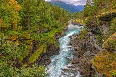 Fototapeta Divoká horská řeka mezi strmými útesy