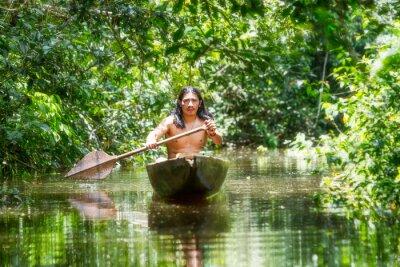 Fototapeta Domorodé dřevěné kanoe