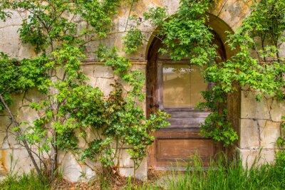 Fototapeta Dřevěné dveře