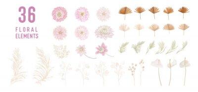 Fototapeta Dried lunaria flowers, dahlia, pampas grass, tropical palm leaves vector bouquets. Pastel watercolor floral