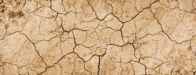 Fototapeta Dry mud background texture banner