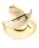 Dva nosí slaměné klobouky kovbojové zepředu · Staré silverbelly a černý ... ec1240474a