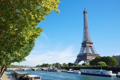 Fototapeta Eiffelova věž, a Seine výhled na řeku zelených větví, slunečný