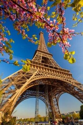 Fototapeta Eiffelova věž v jarním období v Paříži, Francie