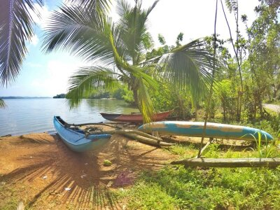 Fototapeta Ein blaues Katamaran liegt einem traumhaften Strand auf der Tropeninsel Srí Lanka