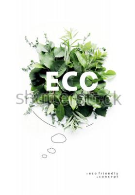Fototapeta Ekologicky šetrné planety Poster.Symbolic mluvící bubliny, vyrobené ze zelené trávy a větví. Minimální charakter koncepce. Příroda mluví zelenou. Koncepce ekologie. Byt ležel. Pohled shora.
