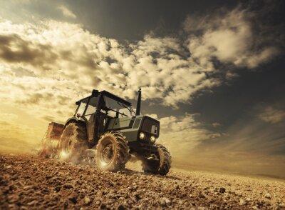 Fototapeta Farmer in the fields driving a tractor