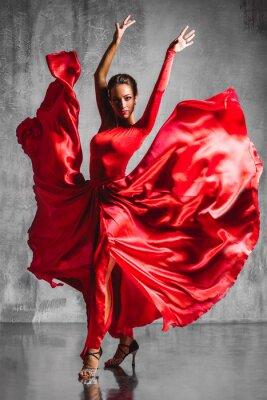 Fototapeta flamenco dancer