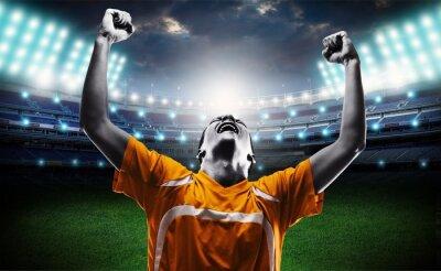 Fototapeta Fotbal.