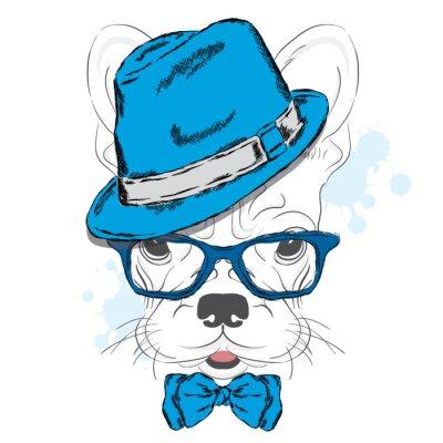 Fototapeta Francouzský buldoček vektor. Cartoon štěně. Pes v klobouku a slunečních brýlí. Roztomilé štěně. Bederní. Chlapec. Rodokmen psa.