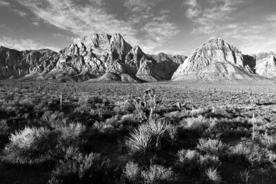 Fototapeta Geologický Skalní formace Red Rock Canyon Las Vegas USA