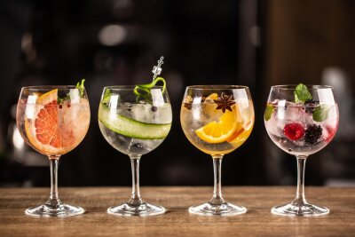 Fototapeta Gin tonic long drink as a classic cocktail in various forms with garnish in individual glasses such as orange, grapefruit, cucumber or berries