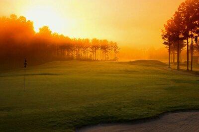 Fototapeta golf course at dawn