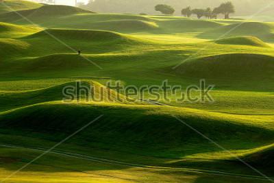 Fototapeta golf place with nice green