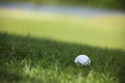 Fototapeta Golfový míček na hřiště