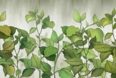 Fototapeta Green leaves of a house plant on a wall background. Tropical leaves. for interior printing.