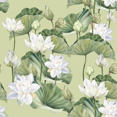 Fototapeta Hand drawn watercolor seamless pattern with white lotus flowers and lotus leaf