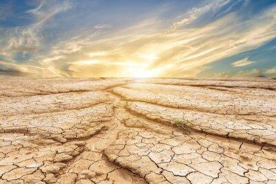 Fototapeta Hnědá suché půdy nebo popraskané země textury na pozadí modré oblohy s bílými mraky západu slunce.